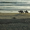 Equestrian Vacations in Costa Rica