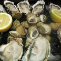 Oyster Bars of Naples, Florida