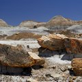 Petrified Forest National Park Lodging