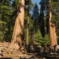 Hotels by Sequoia National Forest