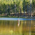 Fly Fishing in Banff National Park