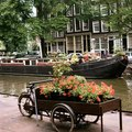 Top Places to Visit in the Netherlands
