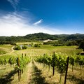 Wine Tasting Hotels in California Wine Country