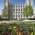 Pet-Friendly Lodging in Salt Lake City, Utah