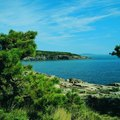 Lodging in Bar Harbor & Acadia Park, Maine