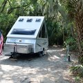 Camping With Pets in Ocala, Florida