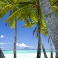 Kids' Activities in Bora Bora