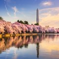 Things to Do in Washington, DC on Saturdays