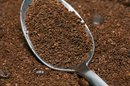 A Science Project for Growing Plants With Coffee Grounds or Soil