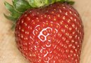 Do Strawberries Lower Your Blood Sugar?