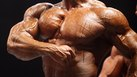 Ideal Beginning Bodybuilding Plan for Endomorphs