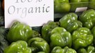 Organic Farm Start Up Grants