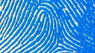 How to Request Fingerprinting for a New Employee