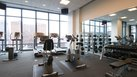 [Gym Equipment] | Various Types of Gym Equipment & Their Uses