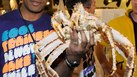 [King Crab] | Alaskan King Crab Fisherman Jobs