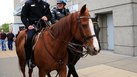 How Much Money Does a Mounted Police Officer Earn a Year?