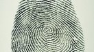 The Personal Characteristics of a Fingerprint Specialist