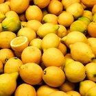 Cómo encender un foco con Frutas Cítricas
