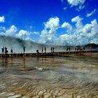 El mejor momento para visitar el parque Yellowstone