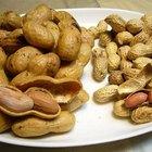 Cajun Style Boiled Peanuts Recipe