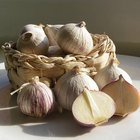 How to Preserve Garlic in Olive Oil