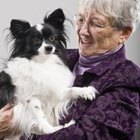 Activities for Homebound Elderly