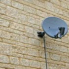 Satellite dishes require minimal knowledge of global positioning to install.