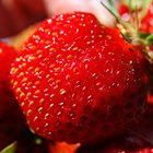 How are Strawberries Good for the Skin?