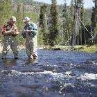 How to Tie the Fly-Fishing Line to the Leader