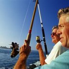 How to Determine the Best Time to Fish