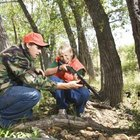 Hog Hunting on Public Land in Texas