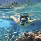 How to Breathe While Snorkeling
