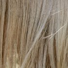 What Causes Human Hair to Turn Gray?