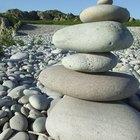¿Qué significa equilibrio homeostático?