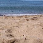 Describe tres formas usadas para reducir la erosión costera