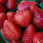 Cuánta azúcar hay en las fresas
