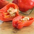 Pimienta de Cayena como un supresor del apetito