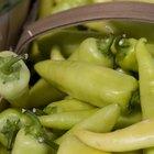 """Valor nutricional del chile amarillo o """"güero"""""""
