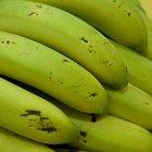 Vitaminas que contienen los plátanos