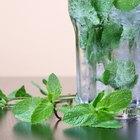 Hierbas para la inflamación estomacal