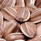 ¿Cuáles son los beneficios de comer semillas de girasol?