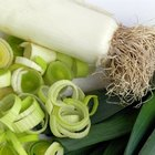 How to Trim Leeks