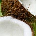 Vitaminas que contiene el coco