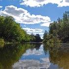Acampar y pescar en el río Brazos, Texas