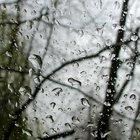 Cómo hacer un sonido de lluvia con tus manos