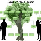 How to Create a Family Tree That Includes Aunts, Uncles & Cousins