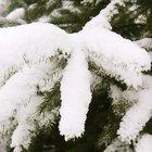 Cómo derretir nieve y hielo rápidamente