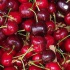 Los beneficios de comer cerezas
