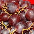 Alergia a las uvas rojas