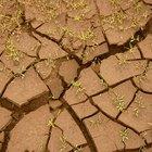 Los tres tipos de erosión de suelo